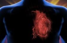 Índice de Masa Corporal vs  Relación de la Circunferencia Abdominal y Talla en Pacientes de Consulta Externa del Programa de Rehabilitación Cardiaca